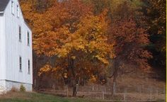 The Land Conservancy for South Chester County
