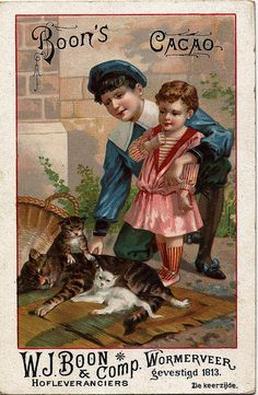 CACAO BOON CHILDREN AND CATS | Flickr - Photo Sharing!