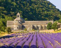 Provence no Sul da França está se tornando um destino cada vez mais popular, de todas as regiões francesas, a região de Provence é talvez o lugar mais irresistível! Pois possui cidades grandes e h...
