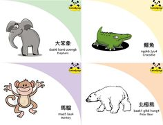 Bilingual (Chinese - English) Vocabulary Flashcards of Zoo Animals, produced by CantonSponge. Check out www.cantonsponge.com for more!