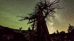 Cory Hansen and Justin Bortnick • Dark Sky Photographers in Santa Cruz California. By Dunbar Productions