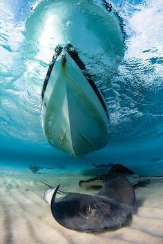 Best Overall Destination 1. Cayman Islands (pictured) 2. Bonaire 3. Mexico 4. Belize 5. Bahamas 6. Bay Islands, Honduras 7. Turks and Caicos 8. U.S. Virgin Islands 9. Grenada 10. British Virgin Islands  GO NOW scubadiving.com/caymanislands
