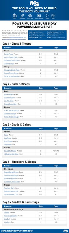 (Click through to download PDF!) Rapidly build size and strength with this powerbuilding 5 day split which focuses on strength building power sets, and crazy-intense burn sets. You have been warned!