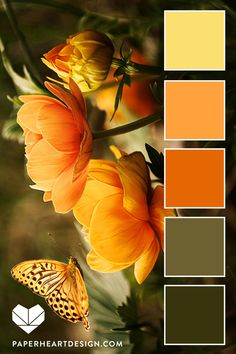 Color Palette: Fantastic Florals — Paper Heart Design #colorpalette #colorpalettes #flowers #butterfly #Colorscheme #orange #yellow #green #olivegreen