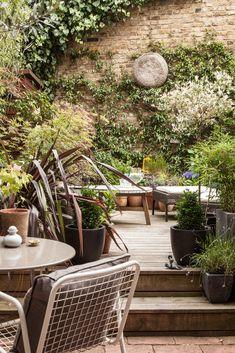Modern Patio by Adelina Iliev Photography Organic Container Gardening, Container Plants, Small City Garden, Home Luxury, Garden Cabins, Contemporary Patio, Big Design, Design Ideas, Outdoor Spaces