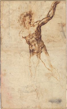 Michelangelo. A nude young man, to front, looking to right., beckoning; and a study of a r. leg Pen and two shades of brown ink (both iron gall); black chalk (leg study). 1503/4