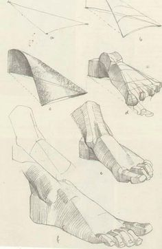 Enjoy a collection of references for Character Design: Feet Anatomy. The collection contains illustrations, sketches, model sheets and tutorials… This Drawing Studies, Drawing Skills, Art Studies, Drawing Techniques, Life Drawing, Drawing Tutorials, Anatomy Sketches, Anatomy Drawing, Anatomy Art