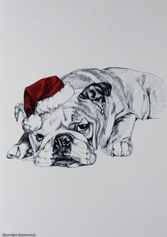 Bummed Bulldog in Red Santa Hat Ink Line Drawing by LynskerCards
