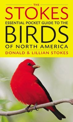 New Book The Stokes Essential Pocket Guide To Birds Of North America