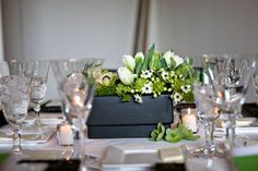 Wedding, Reception, White, Black, Roses, And, Modern, Centerpieces