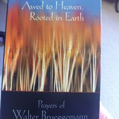 Walter Bruggemann's Awed to Heaven, Rooted in Earth
