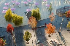 Sugar-Beach-by-Claude_Cormier_Associés-04-CC « Landscape Architecture Works | Landezine
