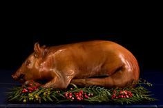 There is a Portuguese butcher near us selling piglets for 60 bucks - This would be so cool to do for Hillman Xmas - Whole Roasted Suckling Pig