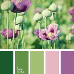 color de los tallos, color lila, color lila suave, color verde hierba, color verde lechuga, combinación contrastante de tonos pasteles, elección del color, lila oscuro, tonos pastel de color verde, tonos verdes, verde lechuga suave, verde oscuro.
