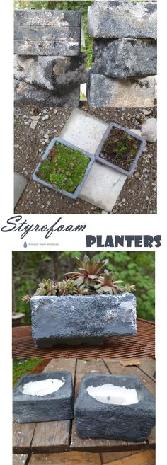 Styrofoam Planters - rugged looking, funky but with hidden benefits... Gardening | Succulents | Garden Pots