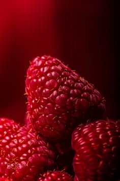Taste One Hot Raspberry! Fruit And Veg, Fresh Fruit, Red Color Meaning, Grape Painting, Simple Subject, 30 Day Art Challenge, Red Photography, Food Lab, Raspberry Smoothie