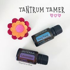 Is there someone in your home that's prone to tantrums? Maybe it's the terrific two year old. Or the teething baby. doTerra Peace and ylang ylang are awesome tantrum tamers.
