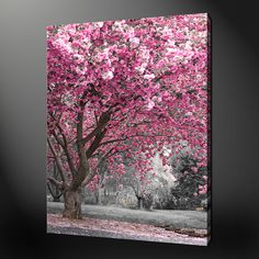 Learn how to paint an easy cherry blossom tree painting- perfect for beginner. Acrylic Art, Acrylic Painting Canvas, Diy Painting, Canvas Art, Cotton Painting, Canvas Picture Walls, Canvas Pictures, Simple Canvas Paintings, Easy Paintings