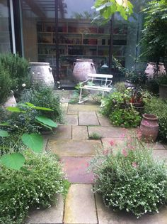 Nigella's courtyard garden, love the pockets of growth out of pavers