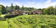 Three Choirs Vineyard Hampshire - Wine Tasting and Vineyard Restaurant