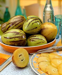 Apple Melon fruit (Solanum muricatum 'Pepino Gold') is an exotic plant with blue flowers with eventually delicious, juicy, honey melon tasting fruits.