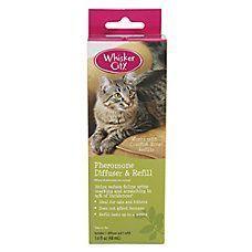 Cat Repellents Deterrents For Indoor Outdoor Petsmart