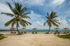Belize Beaches | Grand Caribe Belize Resort and Condominiums Photo: View of the Beach