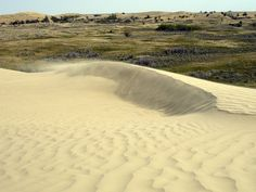 Great Sand Hills near Sceptre