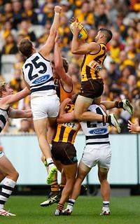 Hawks enjoy a 62-point victory over Geelong at the MCG on Easter Monday. (Round 1, 2015)