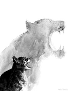 cat drawing art animals Black and White Cool white cats black draw animal dark amazing special tiger grey fog cat art ANIMAL ART Cat Drawing, Painting & Drawing, Drawing Ideas, Dream Drawing, Drawing Girls, Drawing Poses, Drawing Sketches, Animal Drawings, Cool Drawings