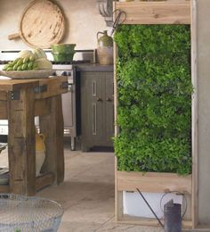 Internal herbs wall