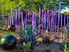 Clic para ampliar Glass Garden, Garden Art, Garden Design, Garden Whimsy, Garden Ideas, Garden Crafts, Scottsdale Arizona, Desert Botanical Garden, Botanical Gardens