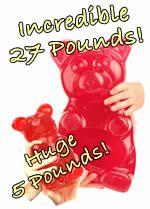 World's Largest Gummi Bears! TM and Giant Gummy Bears - The Original Manufacturer