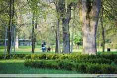 Žiar nad Hronom - Park 5