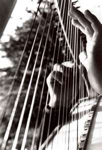 b&w hands on harp