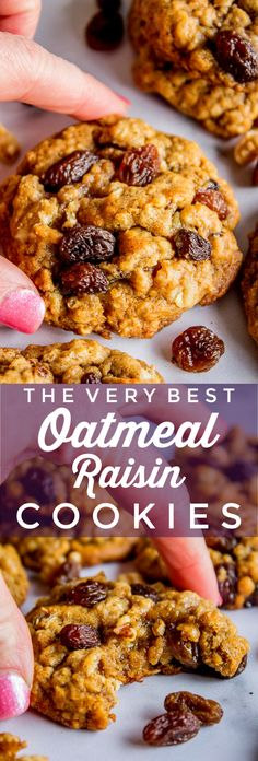 The Very Best Oatmeal Raisin Cookies (Soft and Chewy) from The Food Charlatan. The very best oatmeal raisin cookies you will ever make! The… in 2019 Toffee Cookies, Yummy Cookies, Cookies Soft, Cake Cookies, Super Cookies, Brownie Cookies, Best Oatmeal Raisin Cookies, Oatmeal Cookie Recipes, Oatmeal Raison Cookies