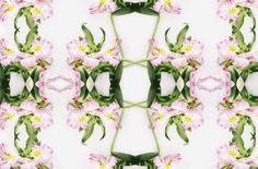 Botanical Patterns - Cocorrina by Corina Nika