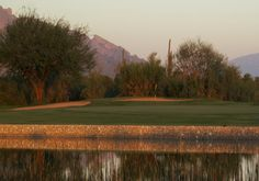 Crooked Tree Golf Course in Tucscon, Arizona  Click on the pin for other Tucson area golf course info and more!