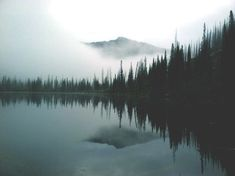 pretty cold lake landscape trees water dark nature outdoors mist eerie fog tree lined jasminelwilson Dark Beauty, Natural Beauty, Adventure Is Out There, Oh The Places You'll Go, The Great Outdoors, Mists, Nature Photography, Beautiful Landscape Photography, Beautiful Places