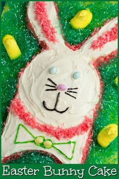 This Easter Bunny Cake is so easy,you can ask the kids to help!