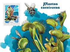 Post stamp Guinea-Bissau GB 14609 b	Carnivorous plants (Heliamphora chimantensis)