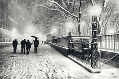 Snowy New York, photographed by Vivienne Gucwa