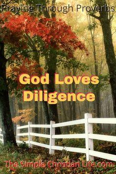 God Loves Diligence at http://wp.me/p7qYZK-5TQ on The Simple Christian Life.com. via @jonclayton