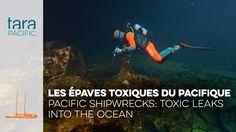 [Tara Pacific] Les épaves toxiques du Pacifique // Pacific shipwrecks: t...