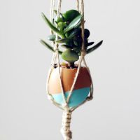 Make Your Own Mini Macrame Succulent Egg Decorations for Easter