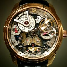 Greubel Forsey Double tourbillon à Technique