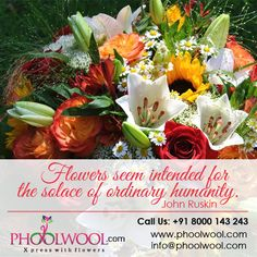 Flowers seem intended for the solace of ordinary humanity.