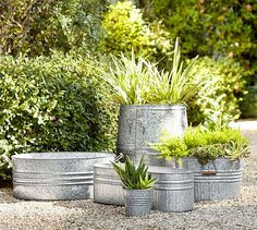 Eclectic Galvanized Metal Planters for container gardening, or for patio plants. Love these for a rustic farmhouse style garden space - outdoor patio decor ideas. Galvanized Planters, Metal Planters, Outdoor Planters, Galvanized Metal, Garden Planters, Outdoor Gardens, Planter Pots, Barrel Planter, Outdoor Garden Decor