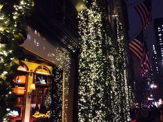 Christmas is coming on Av Christmas Is Coming, Christmas Tree, Empire State Of Mind, Manhattan, Holiday Decor, Home Decor, Teal Christmas Tree, Holiday Tree, Xmas Tree