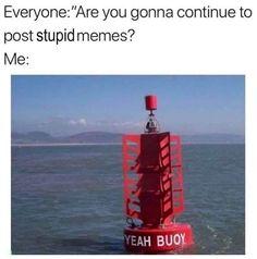 Funny Car Memes, Stupid Funny Memes, Funny Relatable Memes, Dankest Memes, Funniest Memes, Funny Stuff, Meme Gifs, Crazy Funny, Random Stuff